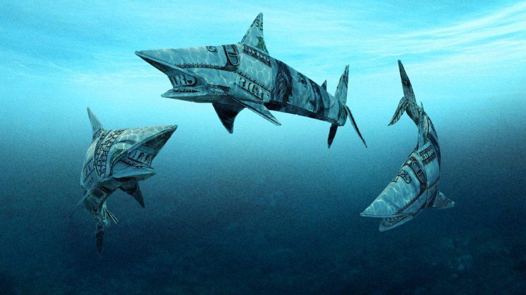 Shark Tank Season 12 Episode 4